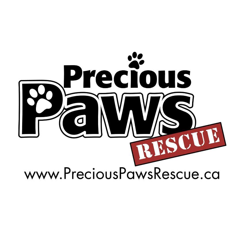 Precious Paws Rescue spring 2021